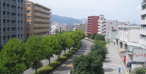 Saijouchuou20090711